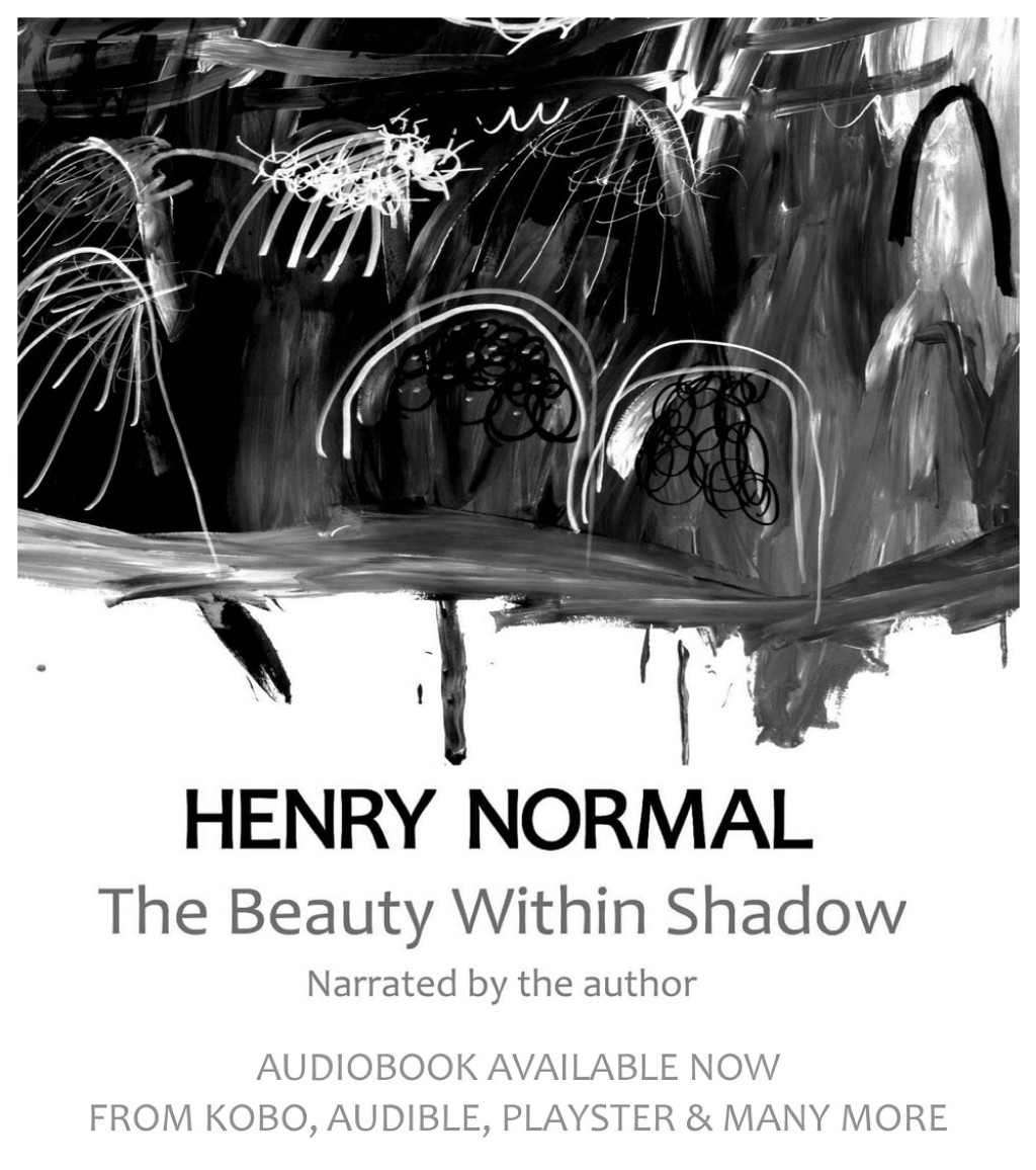 The Beauty Within Shadow Audiobook Out Now
